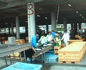 漁市場の写真2