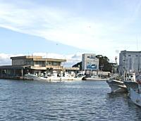 安乗漁港4