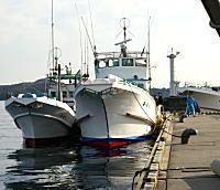 浜島漁港3
