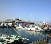 和具漁港4