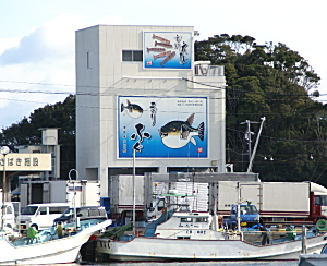 安乗漁港1